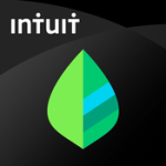 Mint is one of the apps to simplify your life, and this is their logo.